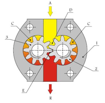 Pompe a engrenage externe